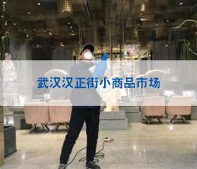 武汉汉正街小商品市场杀菌案例